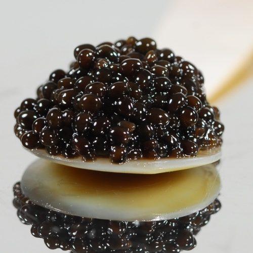 Caviar Dimitri Traiteur pour vos fêtes